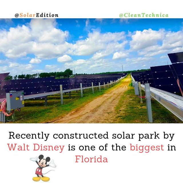 Recently constructed solar park by Walt Disney is one of the biggest in Florida