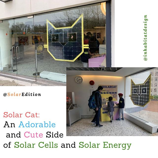 Solar Cat: An Adorable and Cute Side of  Solar Cells and Solar Energy